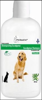 Shampooing Eucalyptus 250 ml