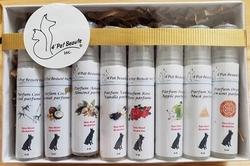 Kit 8 Parfums